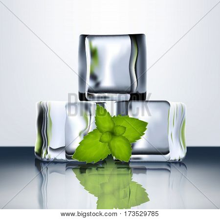 Transparent Ice Blocks With Mint.eps