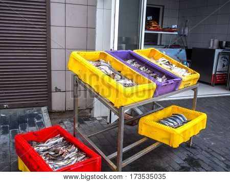 A freshly caught fish in yellow boxes in a fishing port