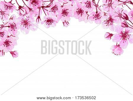 Watercolor Border With Cherry Blossoms
