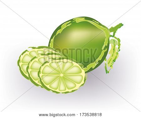 Abstract lime withe slices on white background