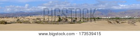 View on the natural reserve La Charca on Maspalomas with mountains and sand dunes Gran Canaria Spain. Panorama format.