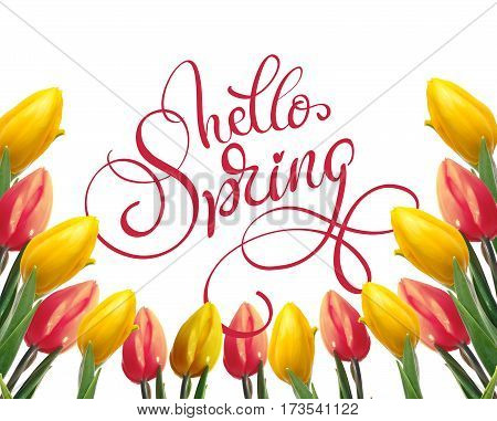 frame of yellow and red tulips on a white background and text Hello Spring. Calligraphy lettering.