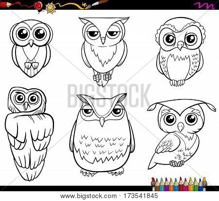 Owl Characters Coloring Page