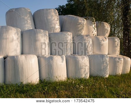 Bales of straw/ silage wrapped in white foil and arranged in a pyramid