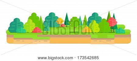 Summer forest flat background. Simple and cute landscape. Flat forest vegetation. Trees, grass, bushes. Isolated object on white background. Vector illustration.