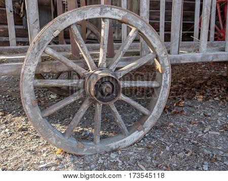 Wooden wheel of a rack wagon Poland
