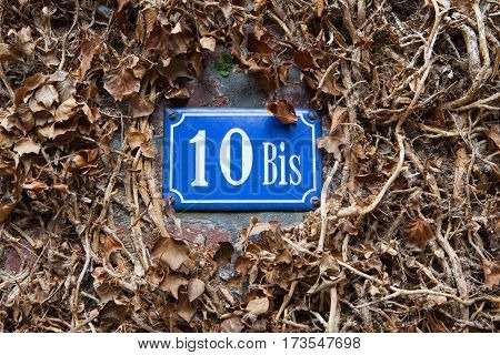 The blue number pointer of the house among the dry leaves