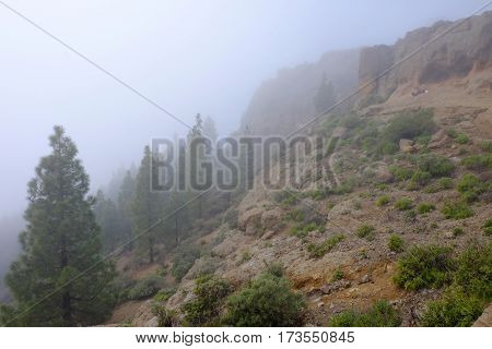 Mountains closed to Roque Nublo covered with a cloud and tourists having a rest on a rock on the Canary Island Gran Canaria Spain.