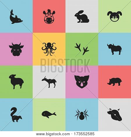 Set Of 16 Editable Zoology Icons. Includes Symbols Such As Bull, Arachind, Gazelle And More. Can Be Used For Web, Mobile, UI And Infographic Design.