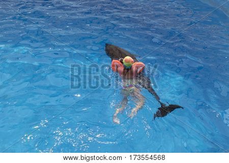 Little girl swim on dolphin in the pool