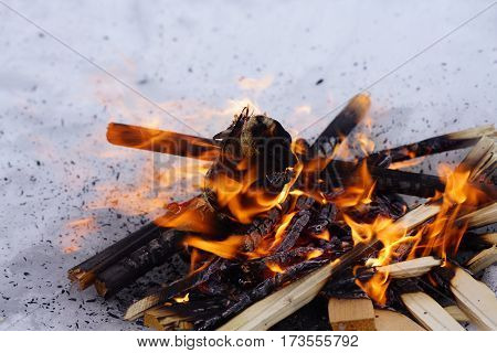 Bonfire On The White Snow In Winter, Fire And Chips