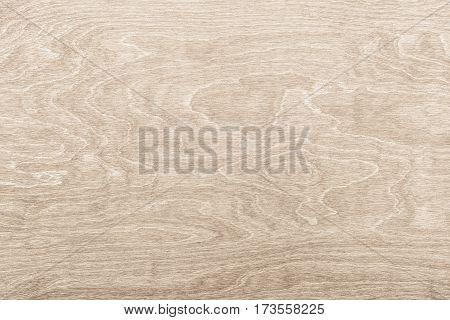 Light wood texture background surface. Wood table surface top view. Vintage wood texture background. Natural wood texture. Light wood background and rustic wood background. Wood texture top view. Surface of wood texture. Timber background of wood textur.