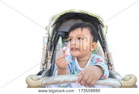Little boy in the pram and holding flower.Looking for inspiration concept of kid