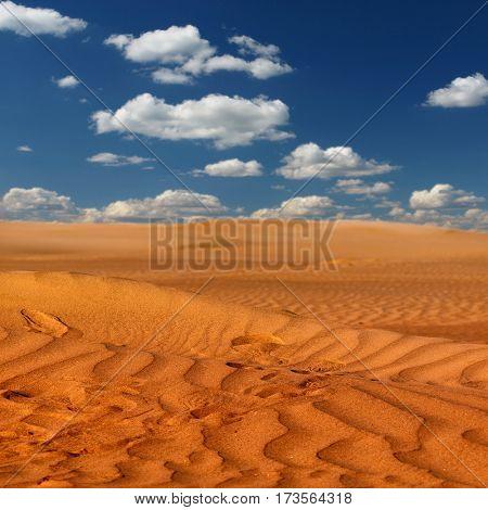 Beautiful sand dunes in the Sahara deser