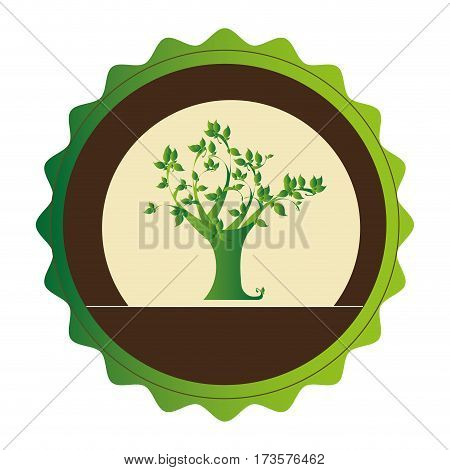 decorative circular emblem with leafy tree plant vector illustration