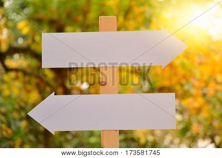 White blank signs pointing in opposite directions nature back ground
