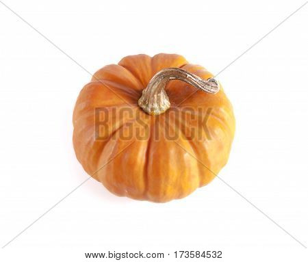 Pumpkins Close Up Isolated On White..