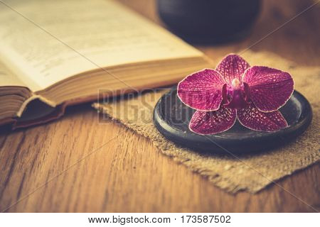 Beautiful Flower With Old Book And Cup Of Coffee Or Tea. Romantic Background With Retro Filter Effec