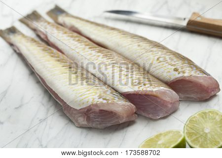 Fresh cleaned raw weeverfishes ready to cook