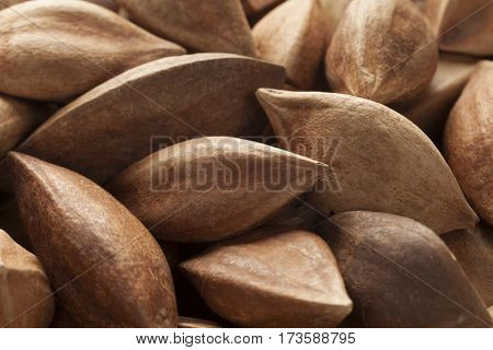 Unshelled pili nuts from the Philippines full frame close up