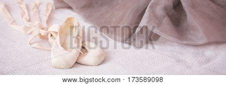 Little Ballet Shoes