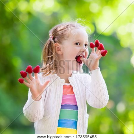 Child picking raspberry. Kids pick fresh fruit on organic raspberries farm. Children gardening and harvesting berry. Toddler kid eating ripe healthy berries. Outdoor family summer fun in the country.