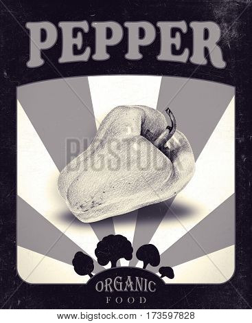 Flyer with pepper drawn by hand with pencil. Retro design. Drawing with crayons. Fresh tasty vegetables painted from nature. Tinted black and white