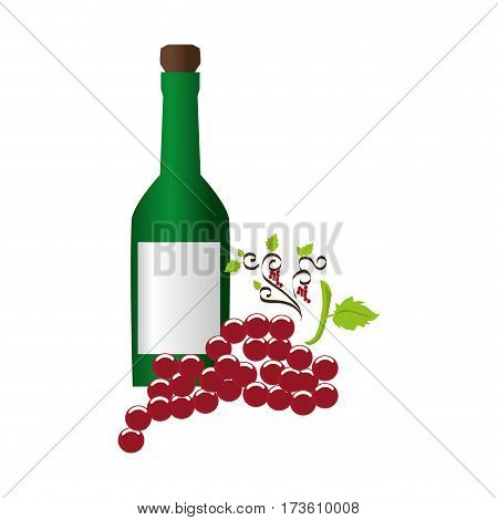wine bottle with cork and bunch of grapes vector illustration