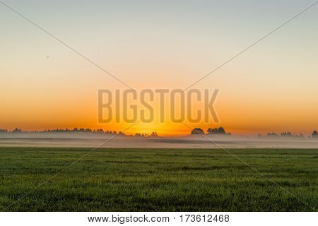 Field of green grass before sunrise on the background of blue sky