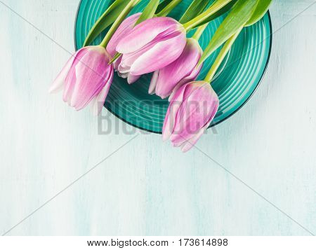 Spring easter purple tulip floral green pastel color background with copy space. Top view. Valentine's mother woman day greeting card