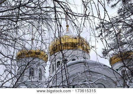 Cupolas of the Raifa Bogorodsky monastery near Kazan, Russia