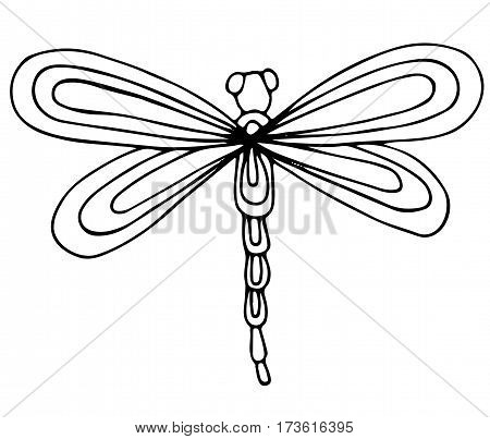 Cute dragon fly isolated on the white background. For coloring book and other child design