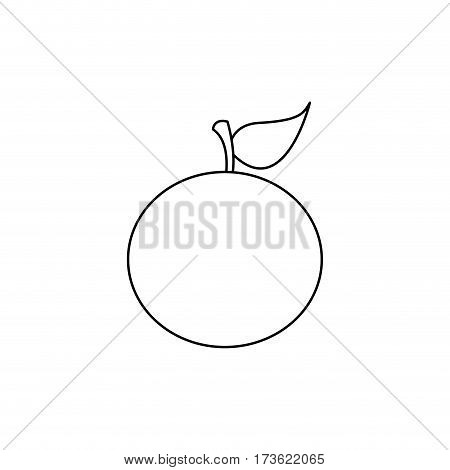 figure orange fruit icon stock, vector illustration design