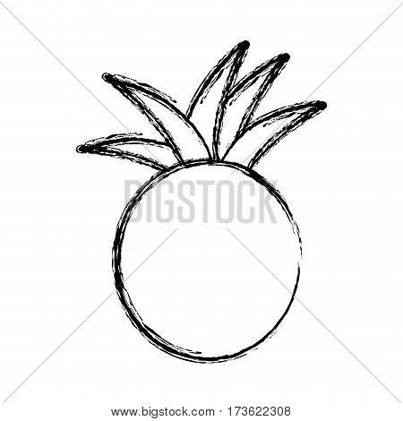 contour pineapple fruit icon stock, vector illustration design