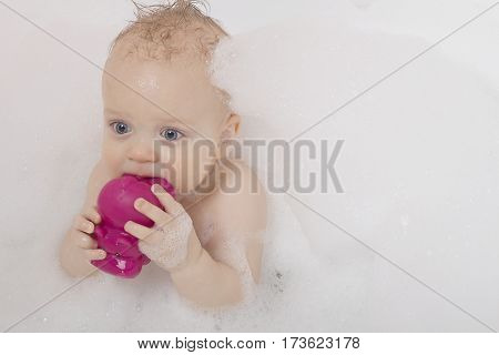 Handsome toddler with a purple toy in his mouth is taking a soapy bath.