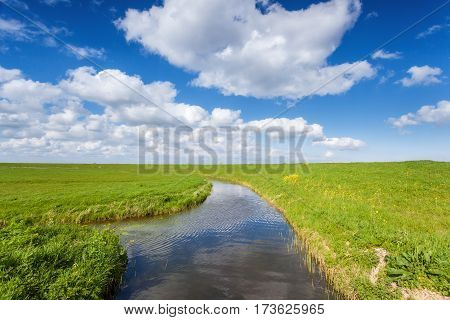 Beautiful Landscape With Green Grass Field
