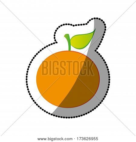 color orange fruit icon stock, vector illustration design