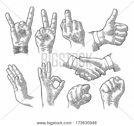 Male and female Hand sign. Fist, Like, handshake, Ok, Stop, Middle finger up, Pointing finger at viewer from front, Fig, Rock Roll gestur. Vector vintage engraved illustration isolated white background