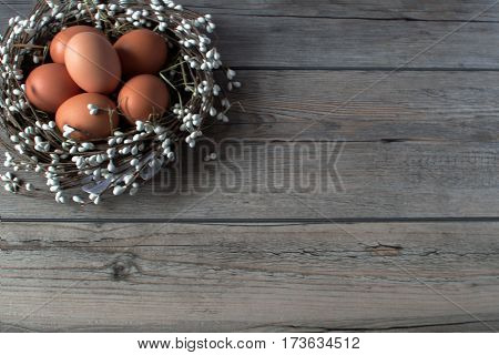 The symbol of the Easter. Brown eggs in the nest on the gray rustik. Traditional holiday  decoration.