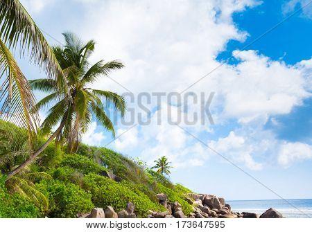 Sunshine Coast Lagoon Seascape