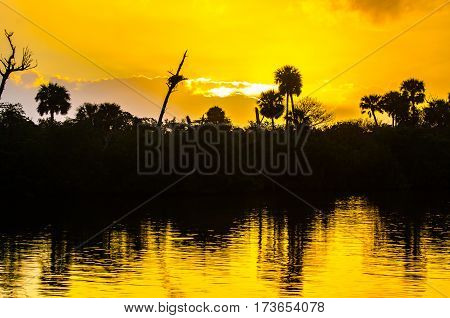 The golden sunrise on the Florida intracoastal waterway with reflections in the rippled water