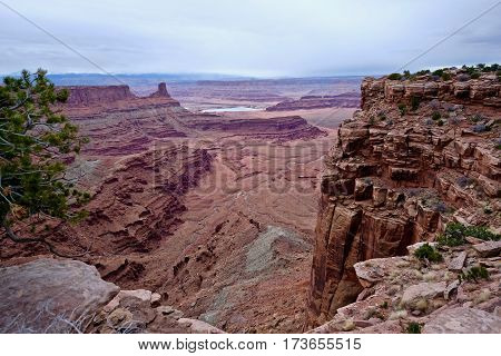 Vast canyon walls and mesa. Canyonlands National Park. Moab. Utah. United States.