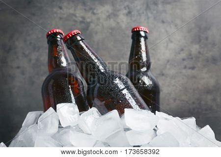 Bottles of beer in ice on gray background