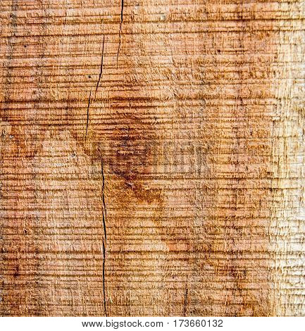 Formed on the surface of the wood background.