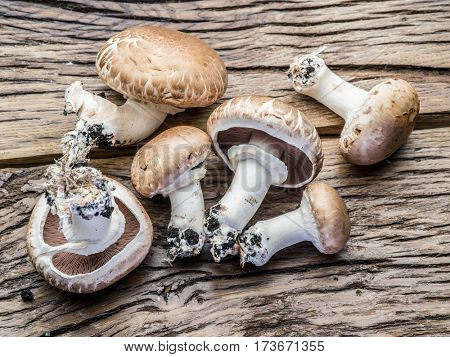 Champignon mushrooms on the wooden table.