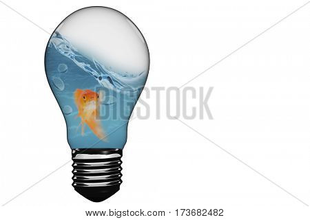 Empty light bulb against mouth open of goldfish while swimming