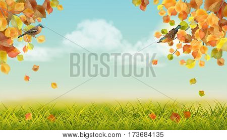 Vector autumn landscape with two birds, grass, clouds, tree branches