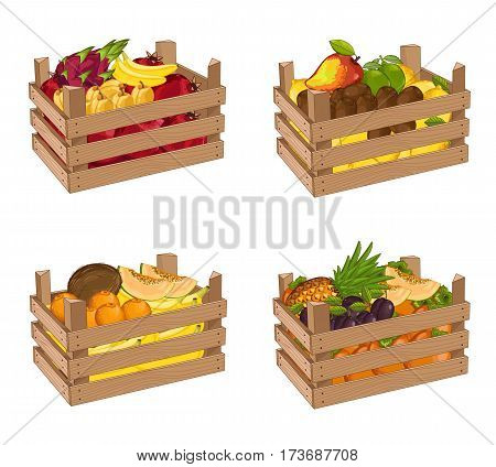 Wooden box full of fruit set isolated vector illustration. Fresh fruit, organic farming, delivery farm product, grocery store. Banana, lemon, kiwi, pomegranate, pineapple, persimmon in wooden crate.