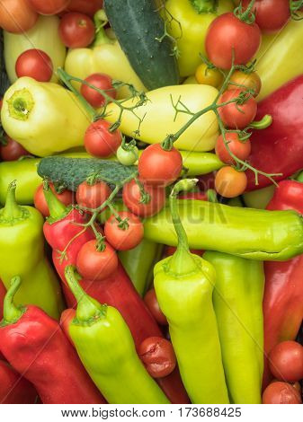 Green pepper, red tomatoes and cucumbers. Vegetables photographed from the top. Large group of fresh vegetables top view.