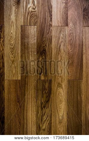 wood texture background old panels